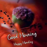 [ 732+ Download ] Monday Good Morning Images Download