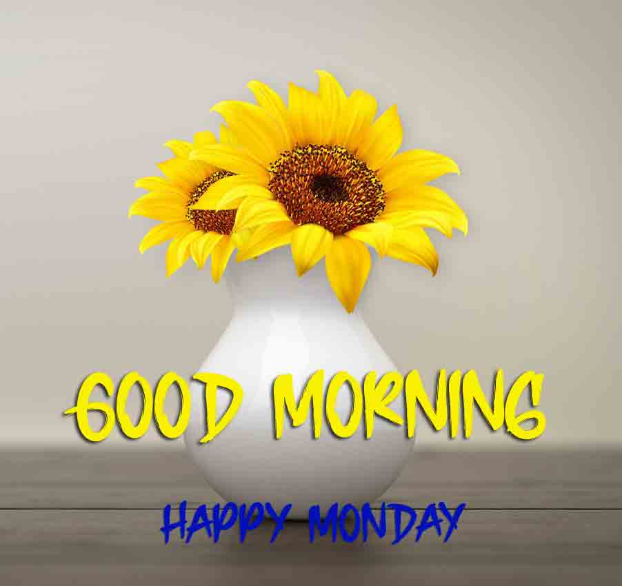 Nice Monday Good Morning Images pictures photo hd download