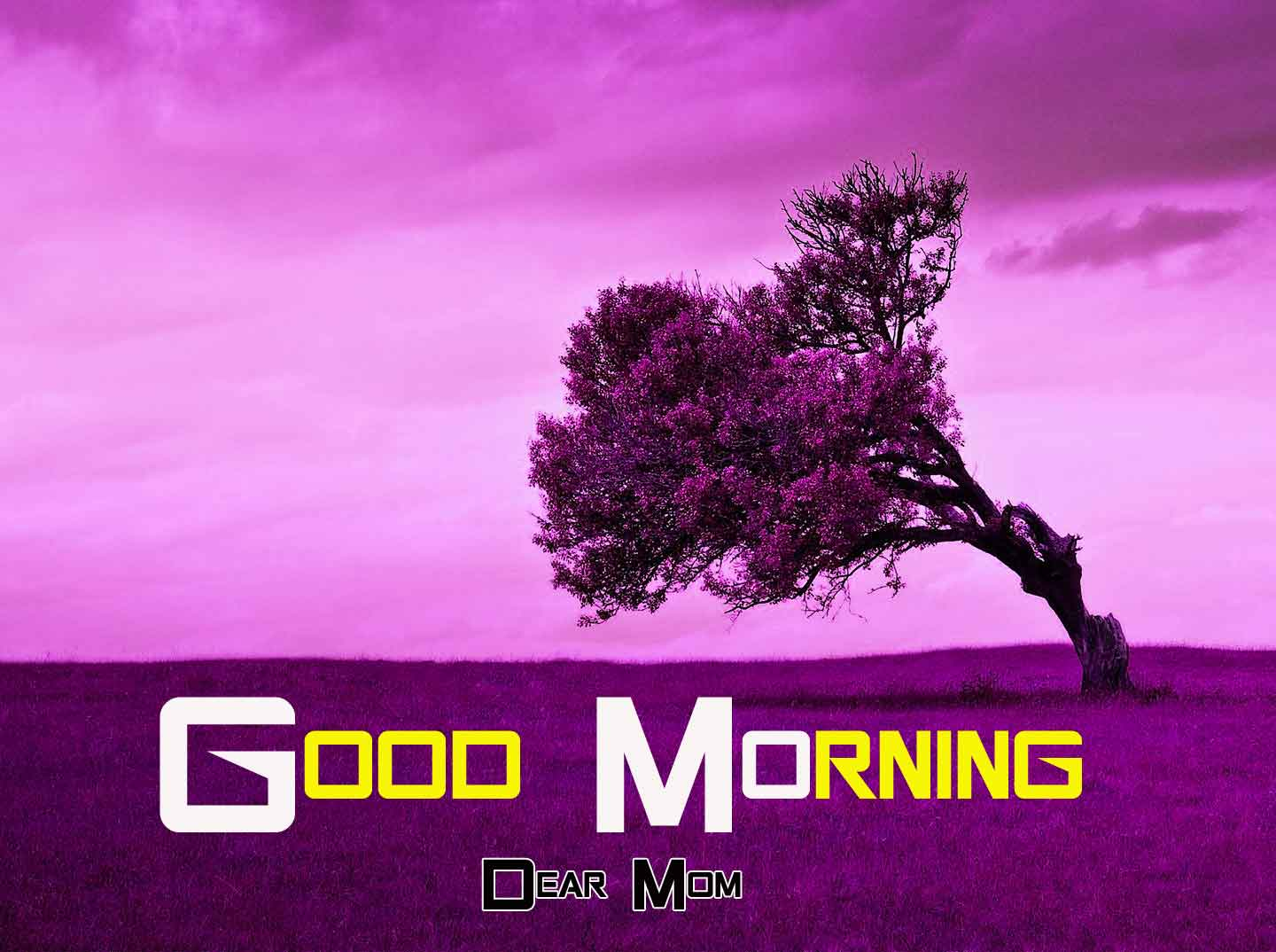 alone Good Morning Nature images hd