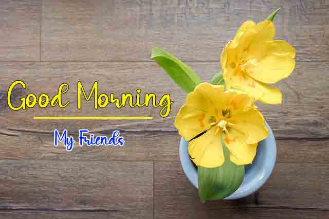 beautiful p Good Morning flower images hd