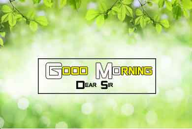 best Good Morning Nature hd download