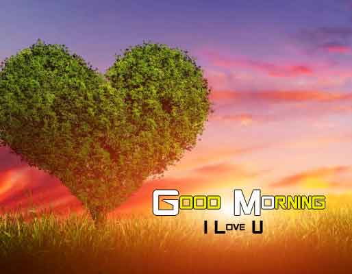 best love Good Morning Nature hd download