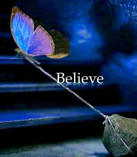 butterfly Beautiful Whatsapp Dp Images