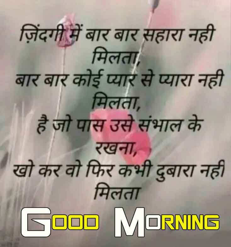 flower shayari Good Morning hd free download