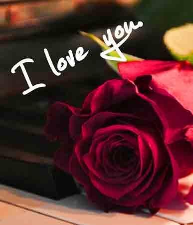 hd I Love You Whatsapp Dp Images