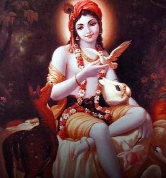 hindu god radhe Krishna whatsapp dp pics hd