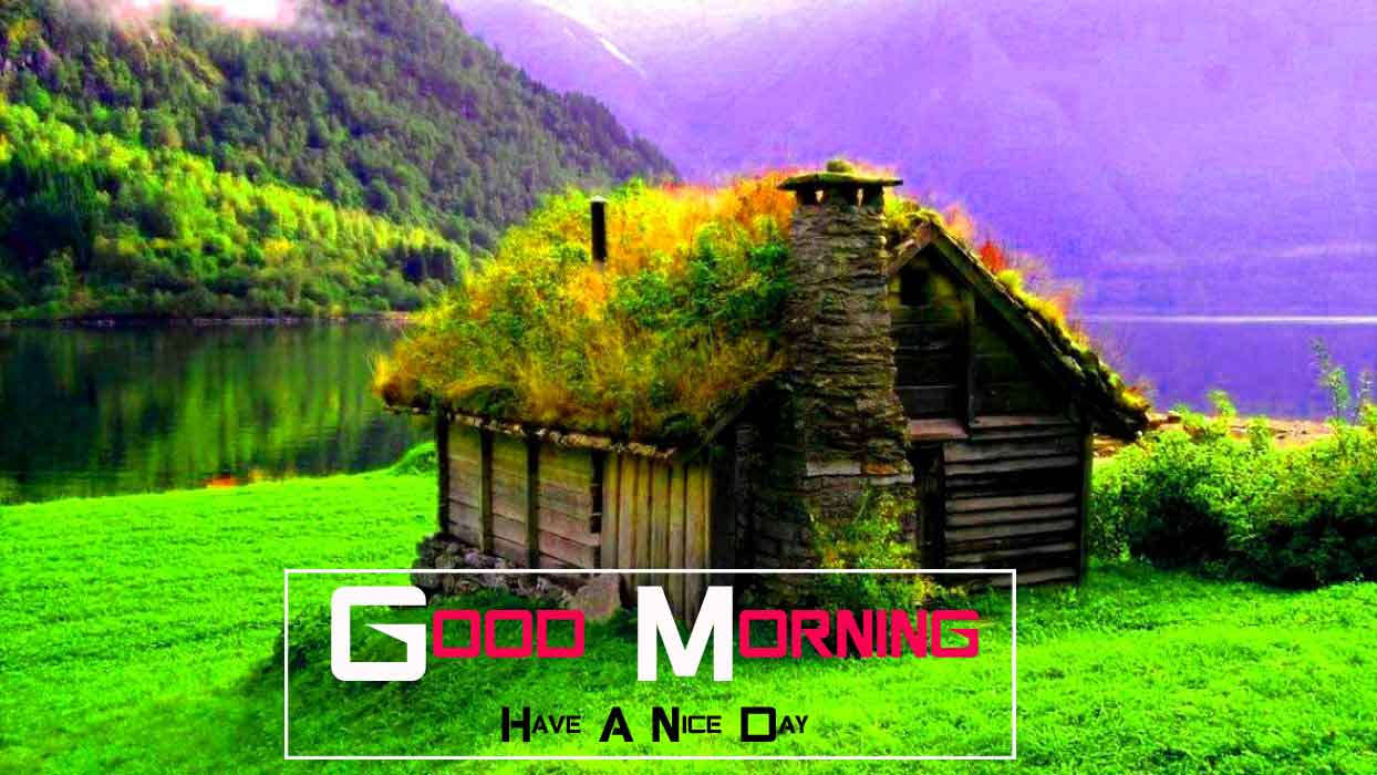 house nature Good Morning images hd