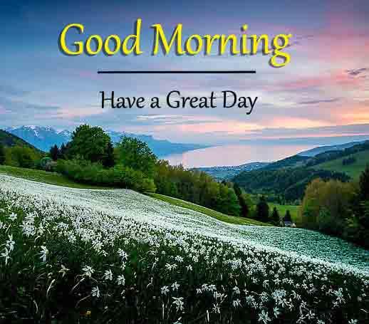 latest k Good Morning pics hd