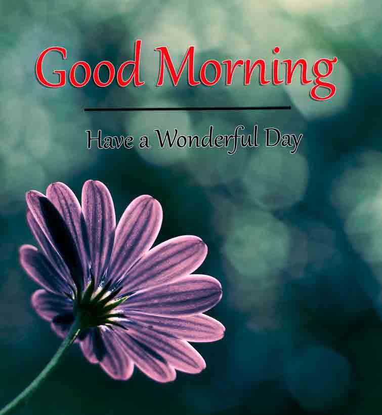 latest blue k Good Morning images hd
