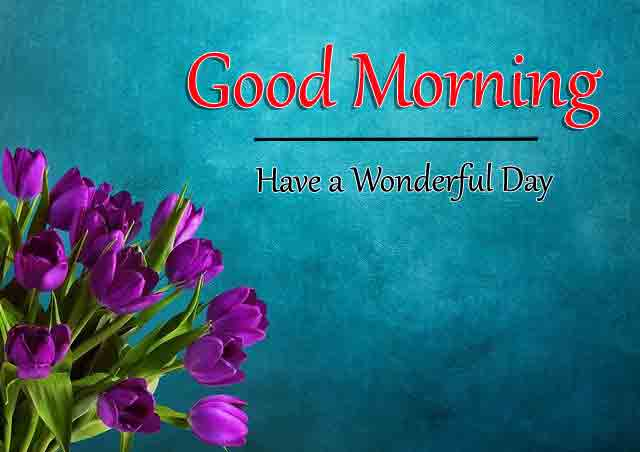 latest pink flower Good Morning free download