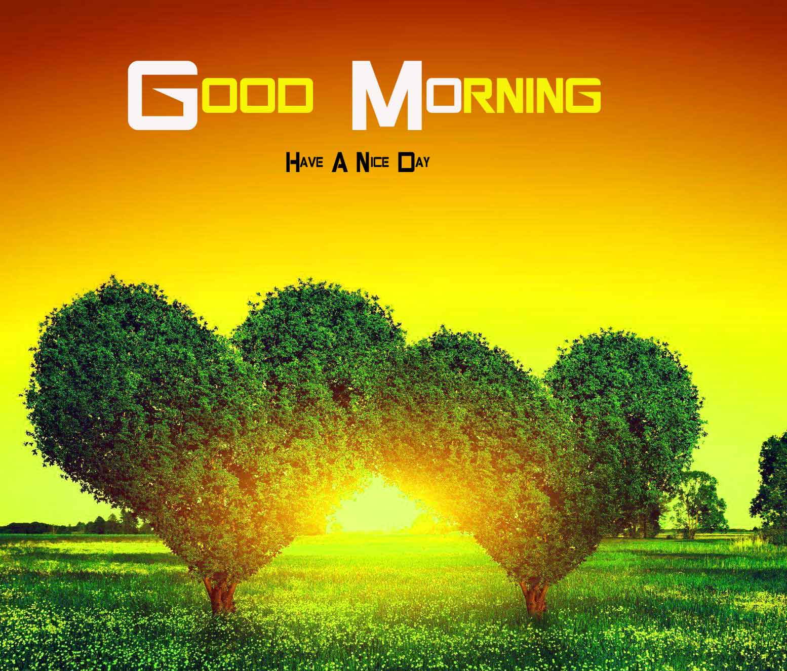 love Good Morning Nature images