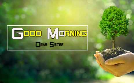 nice Good Morning Nature images hd