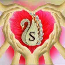 nice heart with S letter Profile hd
