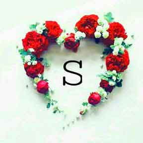 nice heart with S letter whatsapp dp pics hd