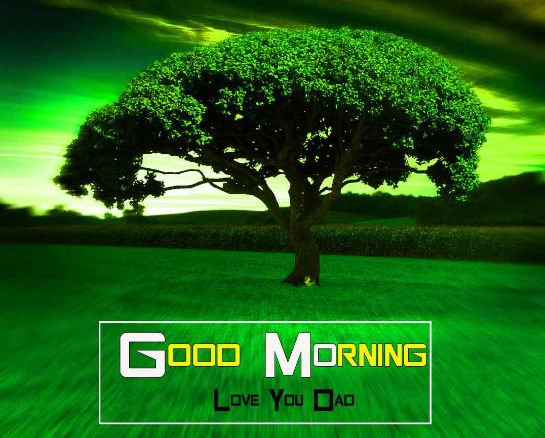 nice nature Good Morning wallpaper