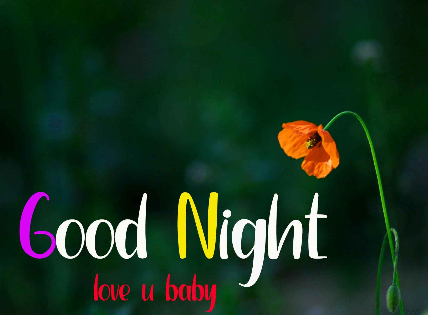 [1147+ Download ] Best Good Night Images  For HD Download
