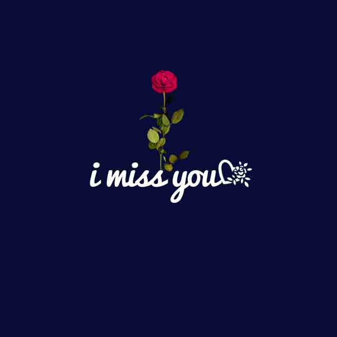 red rose I Miss You Images