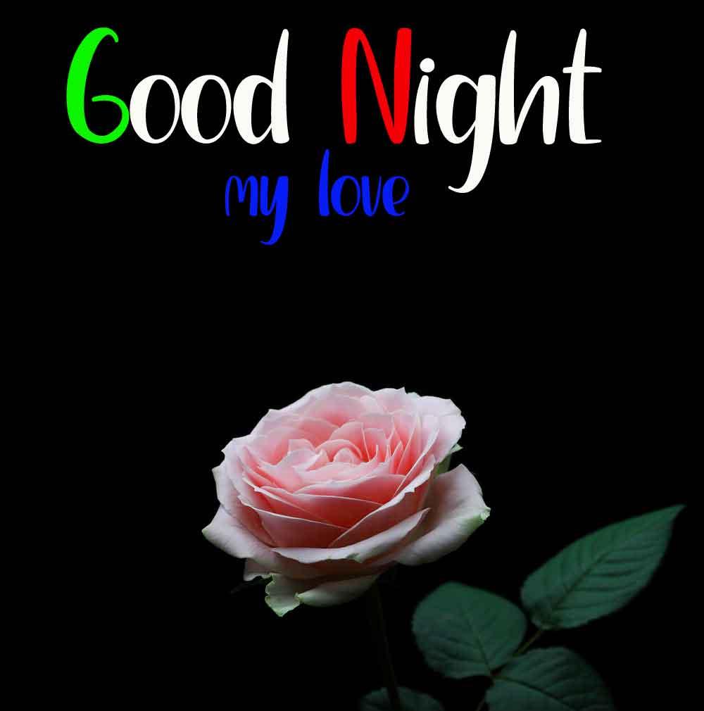 rose flower Good Night hd wallpaper
