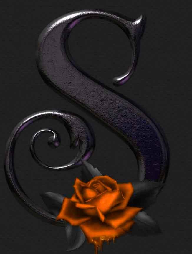rose flower for S letter whatsapp dp image hd