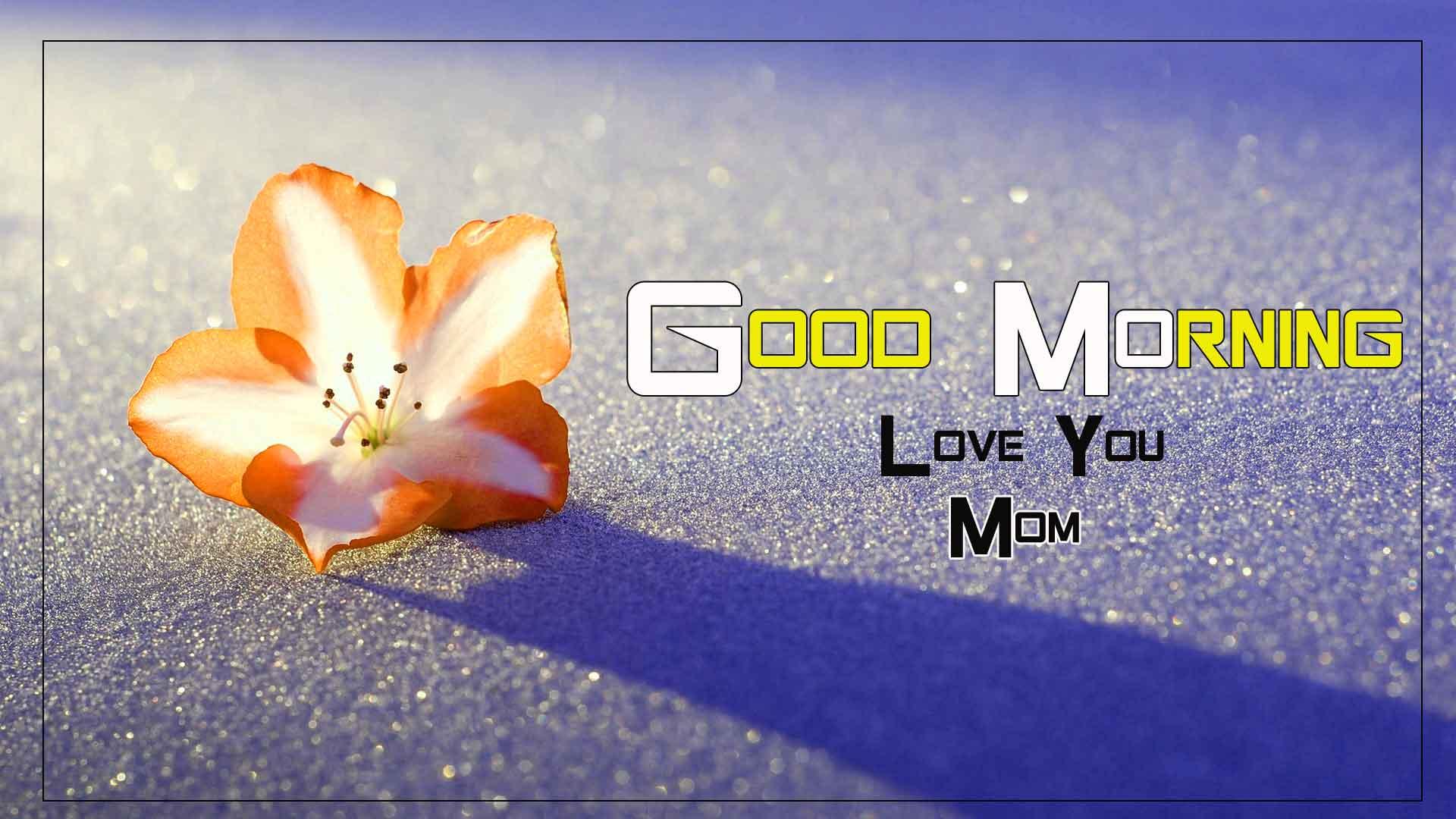 sad Flower good morning love u mom images