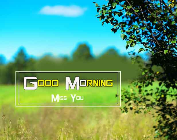 simple Good Morning Nature images