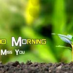 [ 543+ Download ] Nature Good Morning Images HD Download