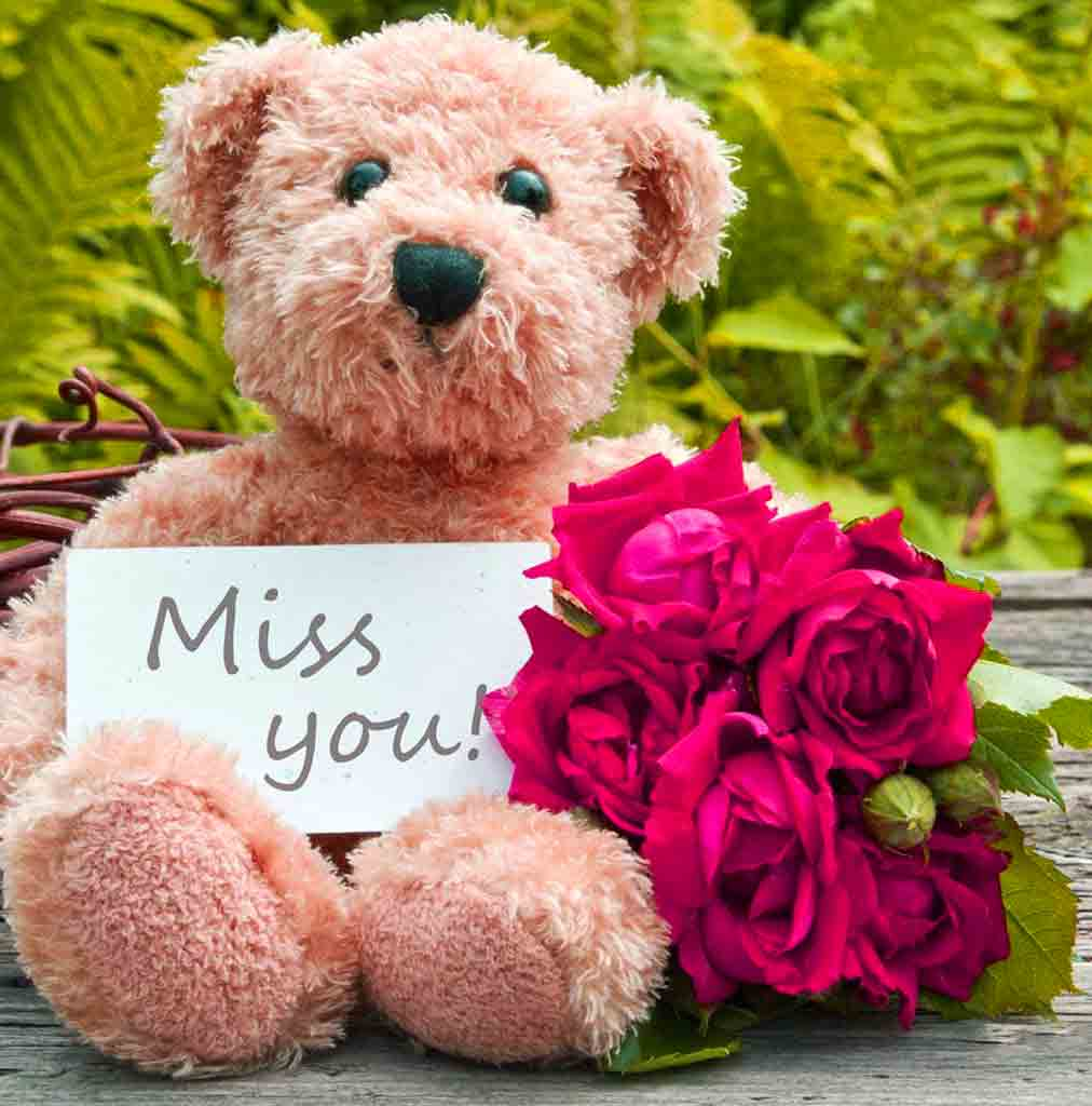teddy bear I Miss You Images