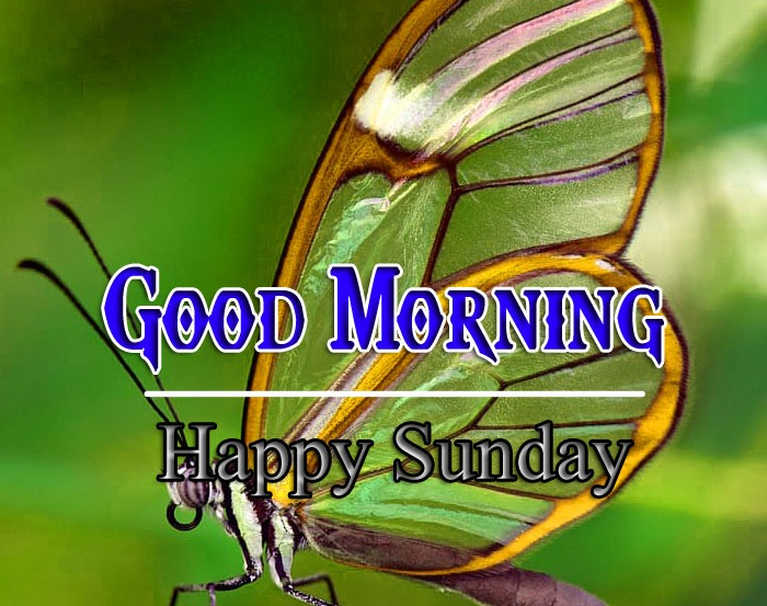 Fress For Friend sunday good morning Images