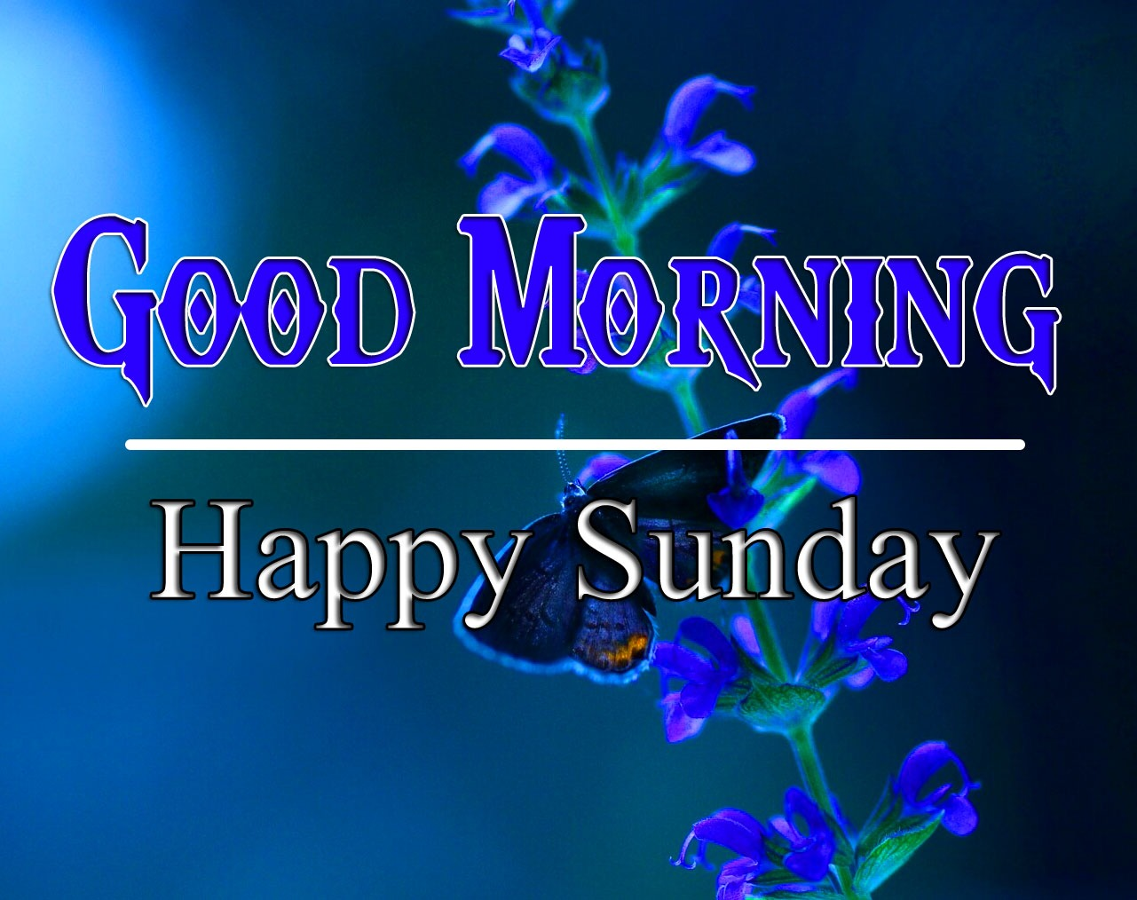 Top HD New sunday good morning Images